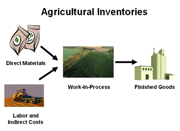 Agricultural Inventories