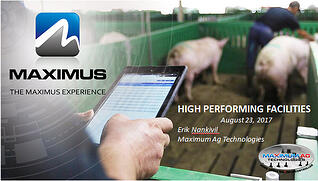 Maximus High Performing Facilities thumbnail.jpg