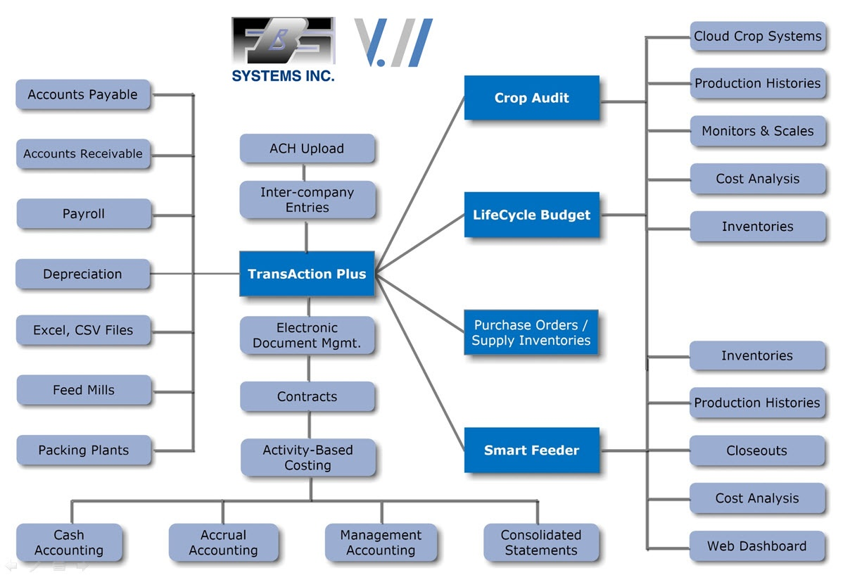 Version_11_Flow_Chart.jpg